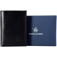 Porte carte Cuir David Jones